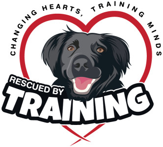 Evidence-based, positive reinforcement dog training