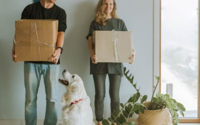 7 Things To Do When Moving To A New Home With Your Dog