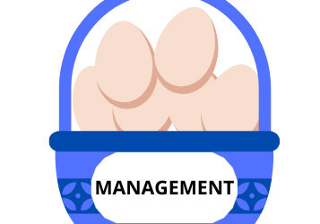 The Importance of Management in Training
