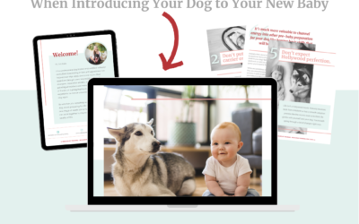Free Guide: 10 Dos and Don'ts When Introducing Your Dog to Your New Baby